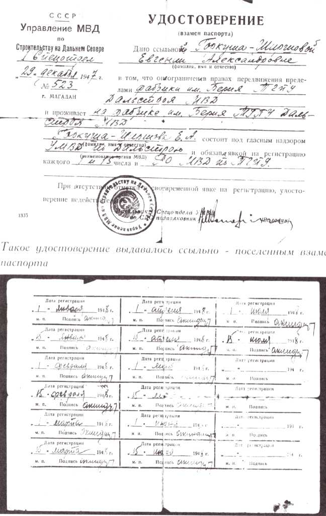 http://bessmertnybarak.ru/files/2/images/bez_fotoshopa/ludi_i_sudbi/akteri/garkusha/6.jpeg