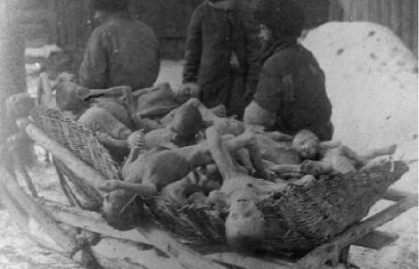голод в ссср 1932-33