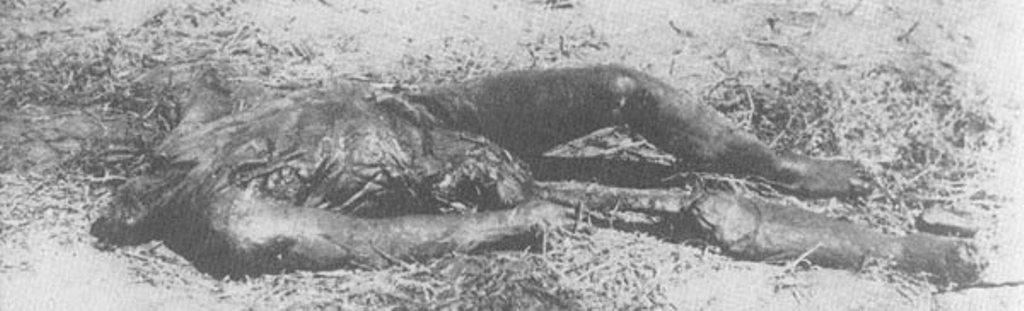 Труп, найденный во дворе херсонской ЧК. Голова отрублена, правая нога перебита, тело сожжено.