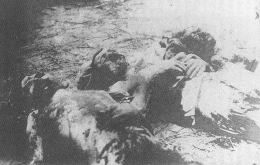 Изуродованные трупы жертв херсонской ЧК.