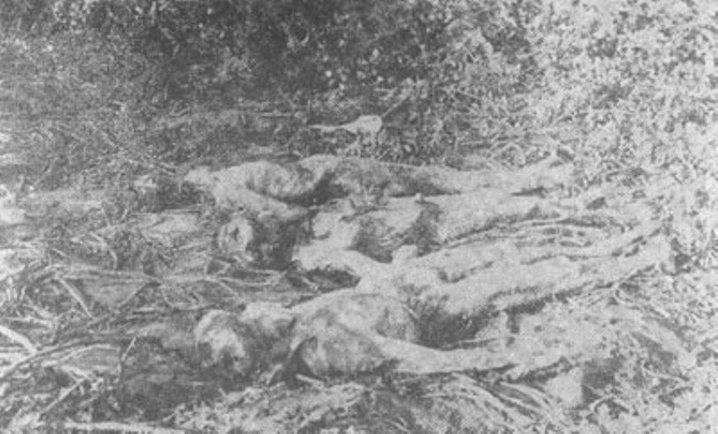 Тела трех рабочих-заложников с бастовавшего завода. У среднего, А. Иваненко, выжжены глаза, отрезаны губы и нос. У других — отрублены кисти рук.