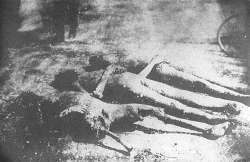 Трупы замученных у одной из станций Херсонской губернии. Изуродованы головы и конечности жертв.