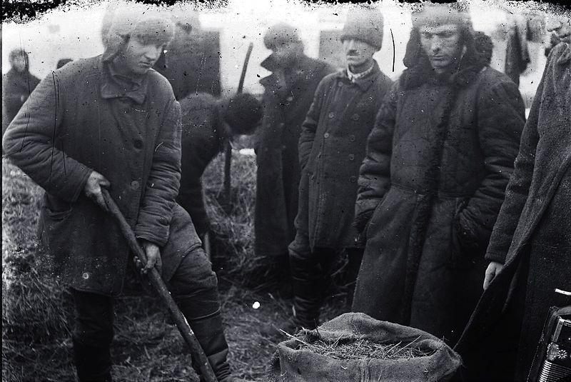 Понятые во дворе крестьянина при поиске хлеба в одном из сел Гришинского района Донецкой области