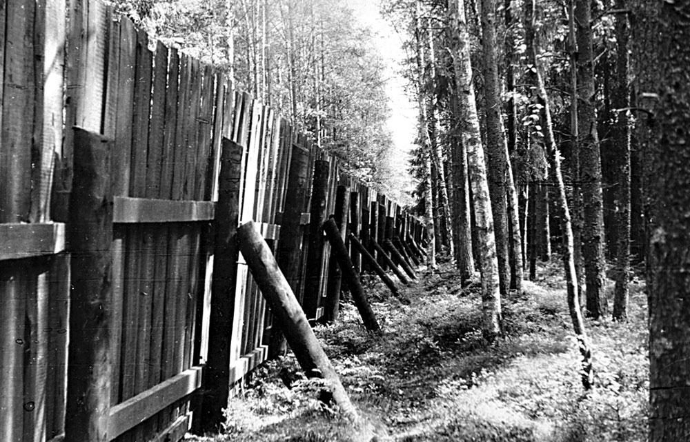Забор кладбища (вид изнутри) и собачья охранная тропа. Июнь 1990 года.